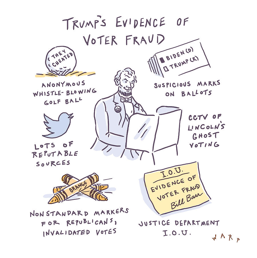 Evidence of Voter Fraud Drawing by Kim Warp