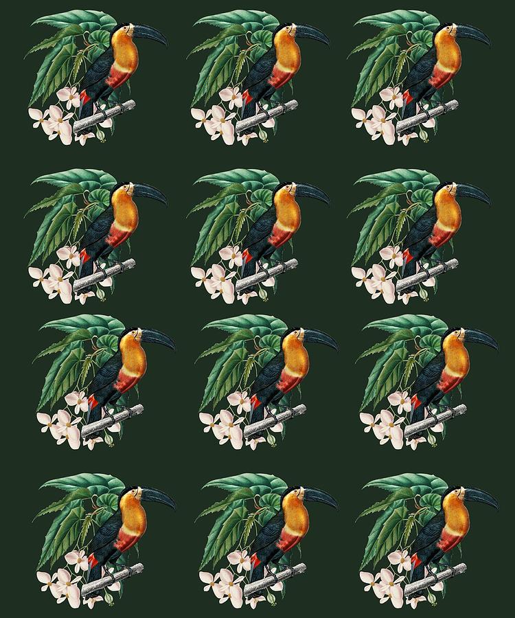 Exotic Jungle Design Toucan Mixed Media