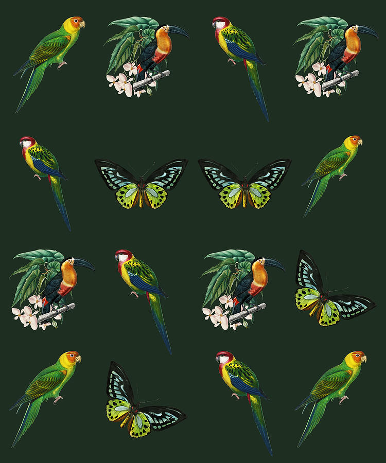 Exotic Jungle Design Toucans Butterflies Parrots On Green Photograph