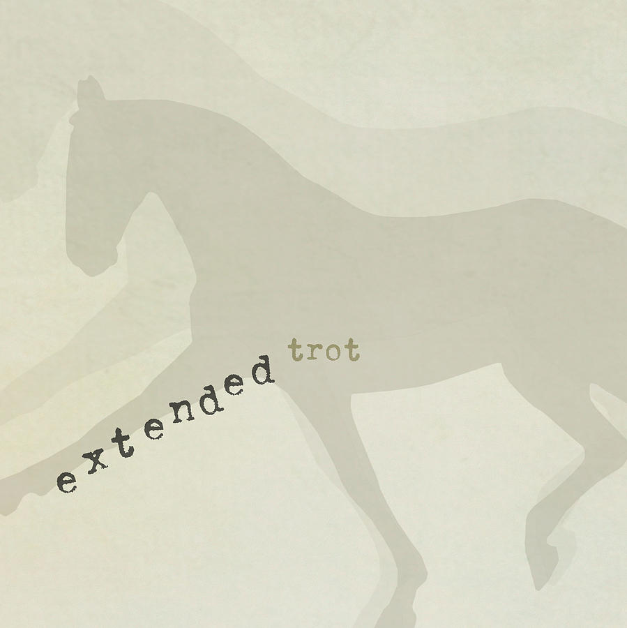 EXTENDED by Dressage Design