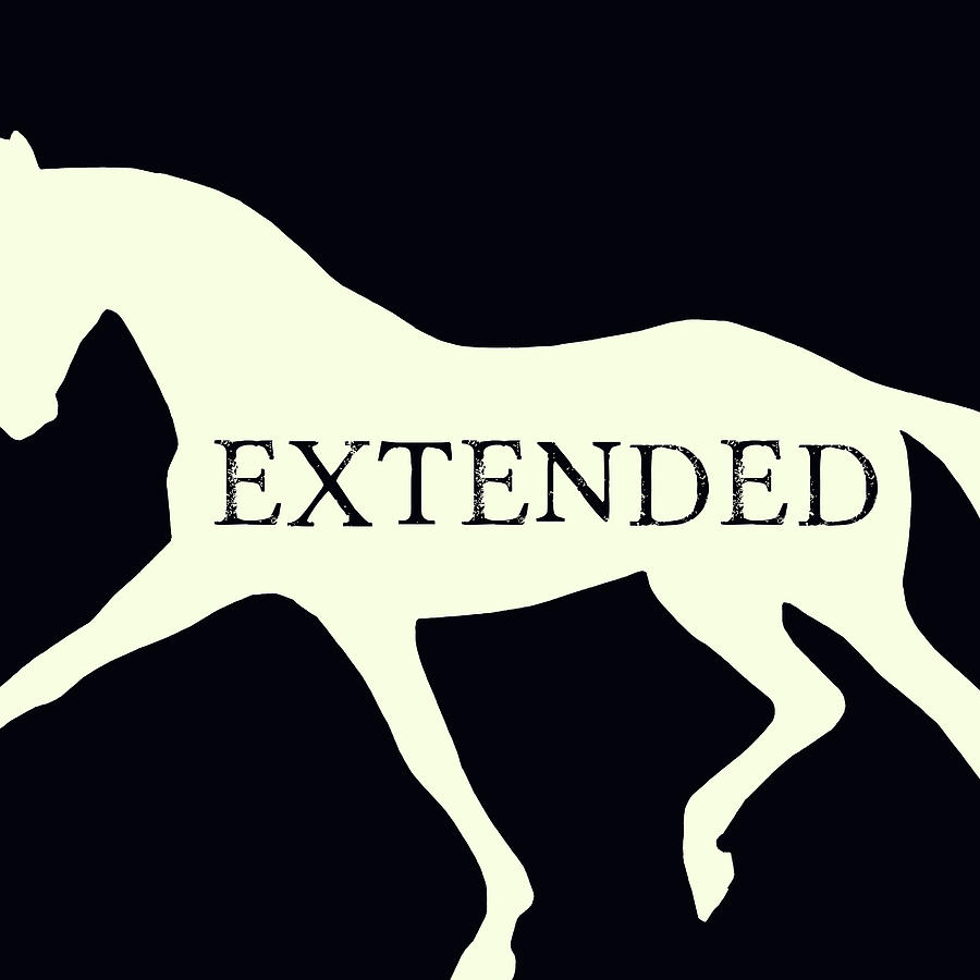 EXTENDED NEGATIVE SQUARED by Dressage Design