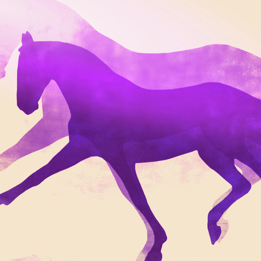 EXTENDED PURPLE HUES SQUARED by Dressage Design