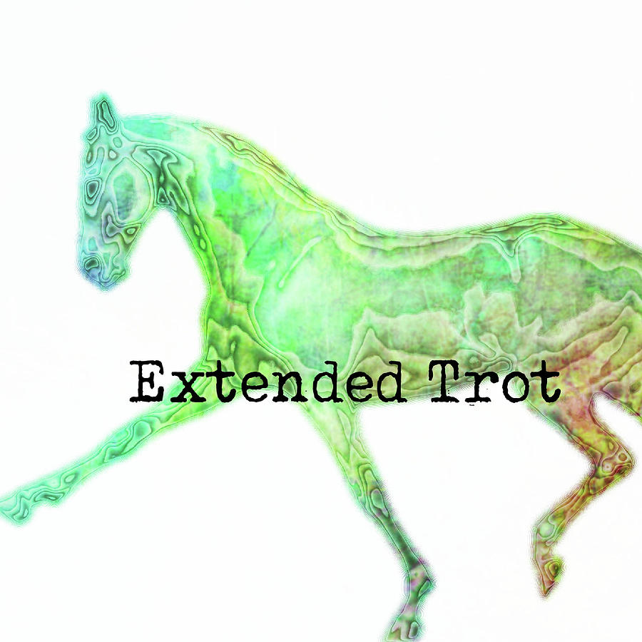 EXTENDED WATERCOLOR SQUARED by Dressage Design