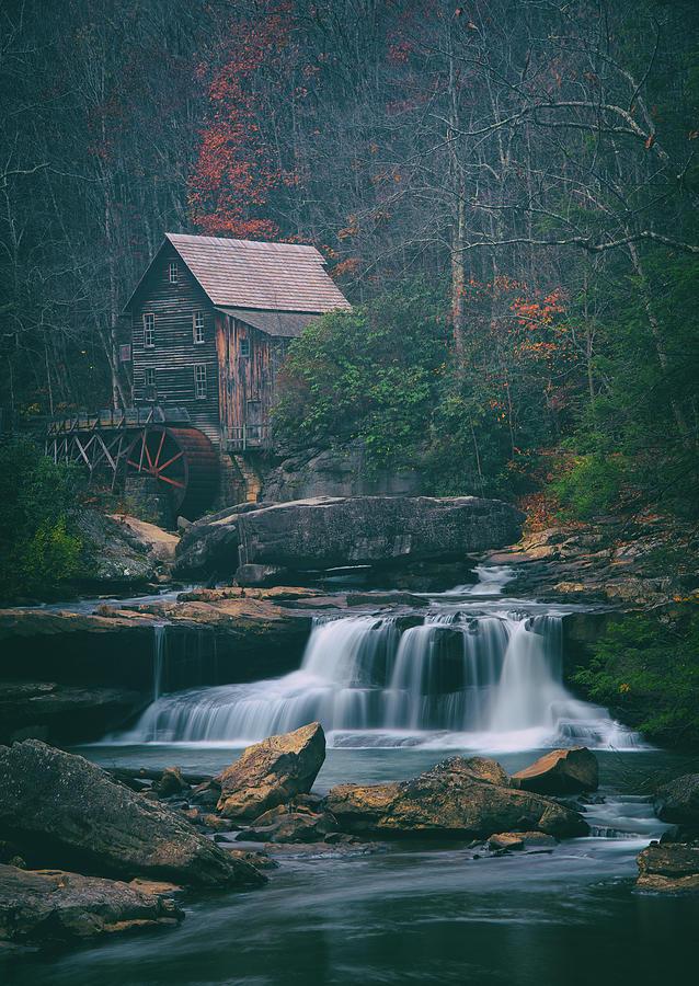 Faded Autumn - Cool Tones Photograph