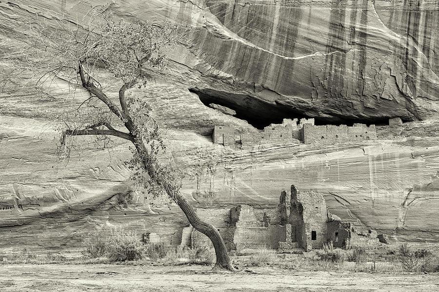 Faded Civilization Bw Photograph