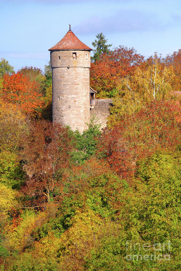 FALL ALONG THE WATCHTOWER by Douglas Taylor