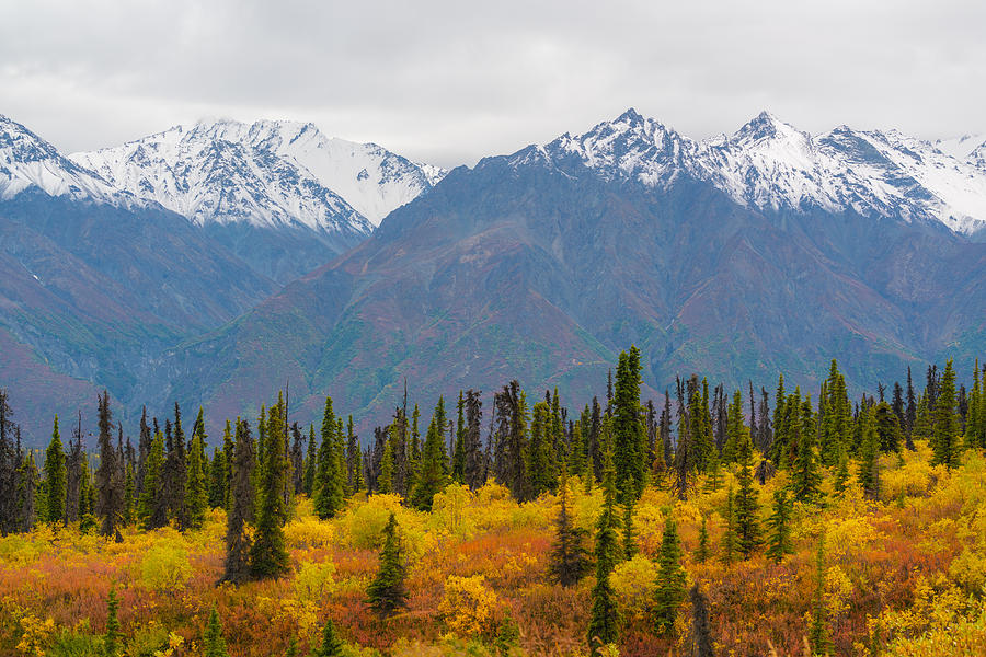 Fall and winter by Asif Islam