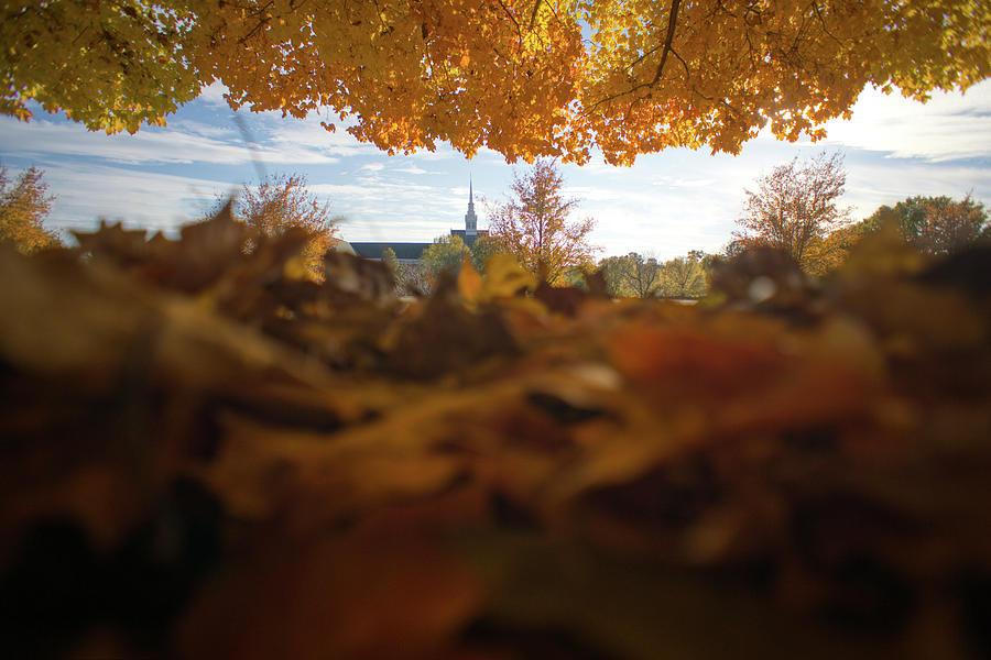 Fall Apart by Daniel Brinneman