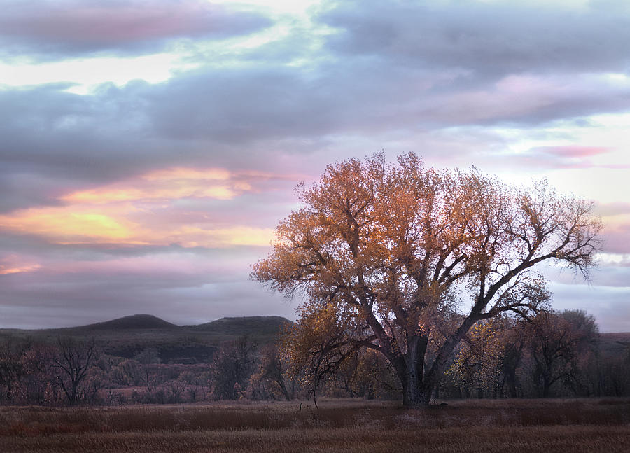 Fall at Fort Laramie Photograph by Laura Terriere