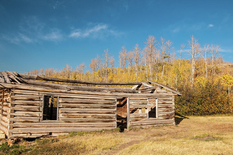 Fall At The Shane Cabin Photograph