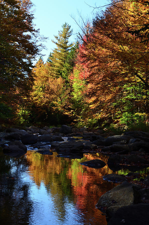 Fall Reflect I - New York Photograph