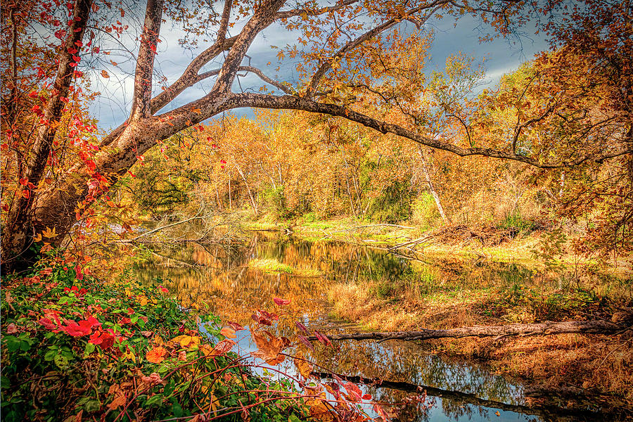 Fall Color Calm by William Havle
