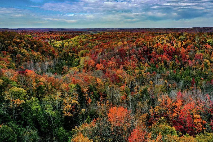 Fall Colors in the Jordan Valley DJI_0156 by Michael Thomas
