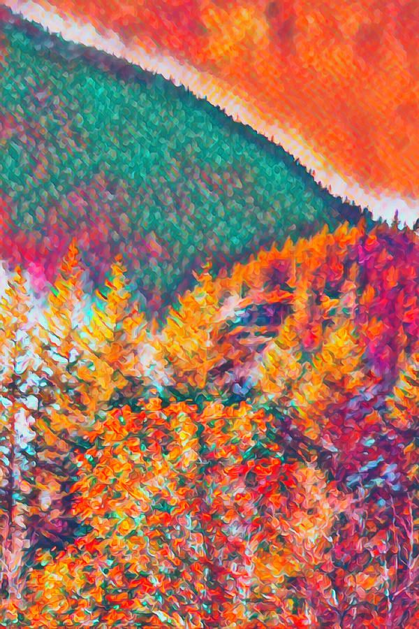 Fall Colors Northern Cascades by Cathy Anderson