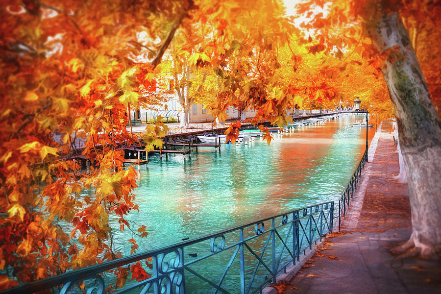Fall Colors Of Canal Du Vasse Annecy France Photograph