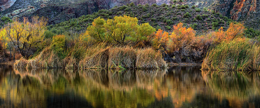 Fall Colors Reflections by Dave Dilli
