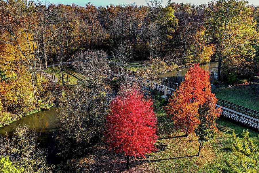Fall Dodge Park Bridge View DJI_0295 by Michael Thomas
