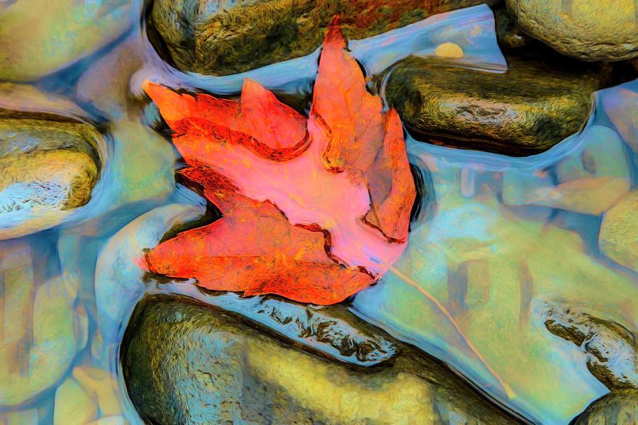 Fall Float Painting by Debra and Dave Vanderlaan