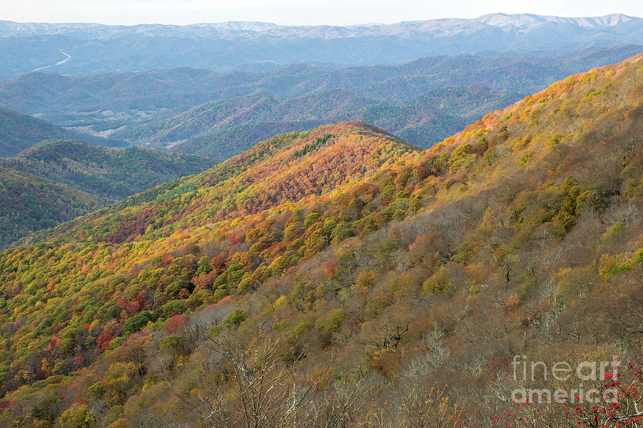 Fall Foliage Photograph - Fall Foliage, View From Blue Ridge Parkway by Felix Lai