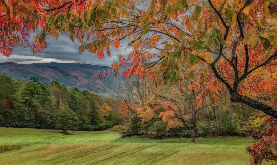Fall in the Cove, Stylized by Marcy Wielfaert