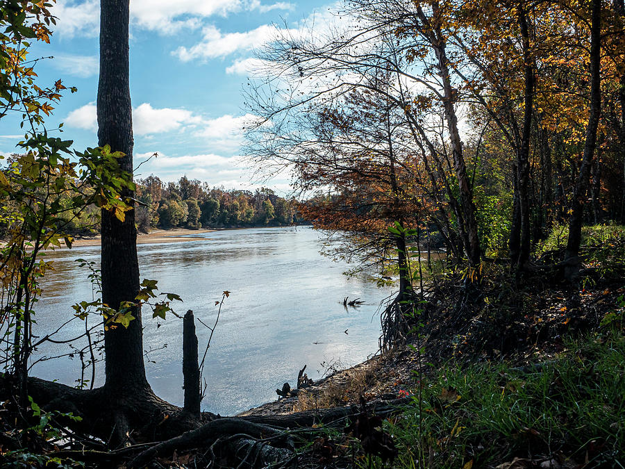 Fall On The Neches River Photograph