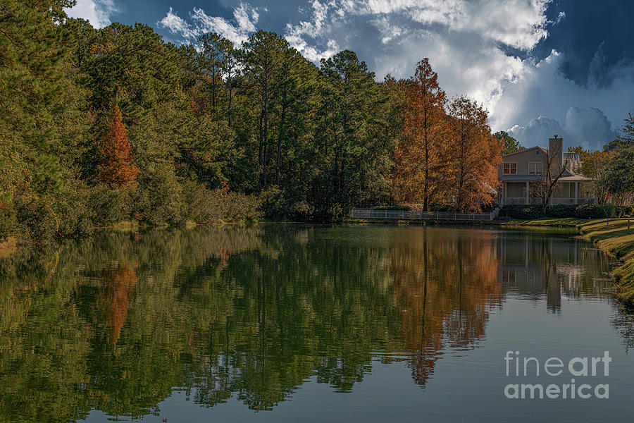 Fall Pond Reflections - Autumn Hues Of Gold Photograph