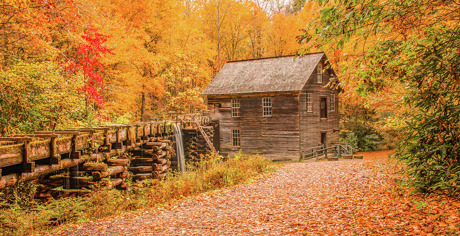 Fall Spectacular at Mingus Mill by Marcy Wielfaert
