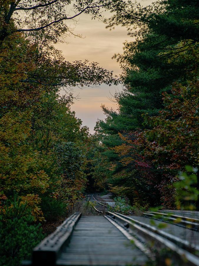 Fall Tracks Photograph