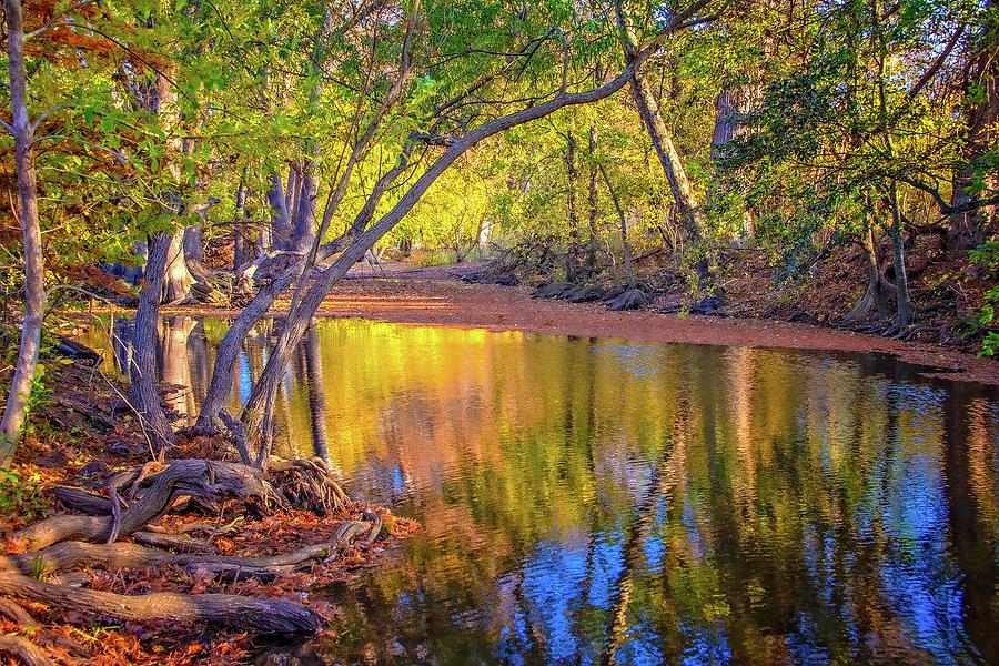 Fall's Light on Cibolo Creek by Lynn Bauer