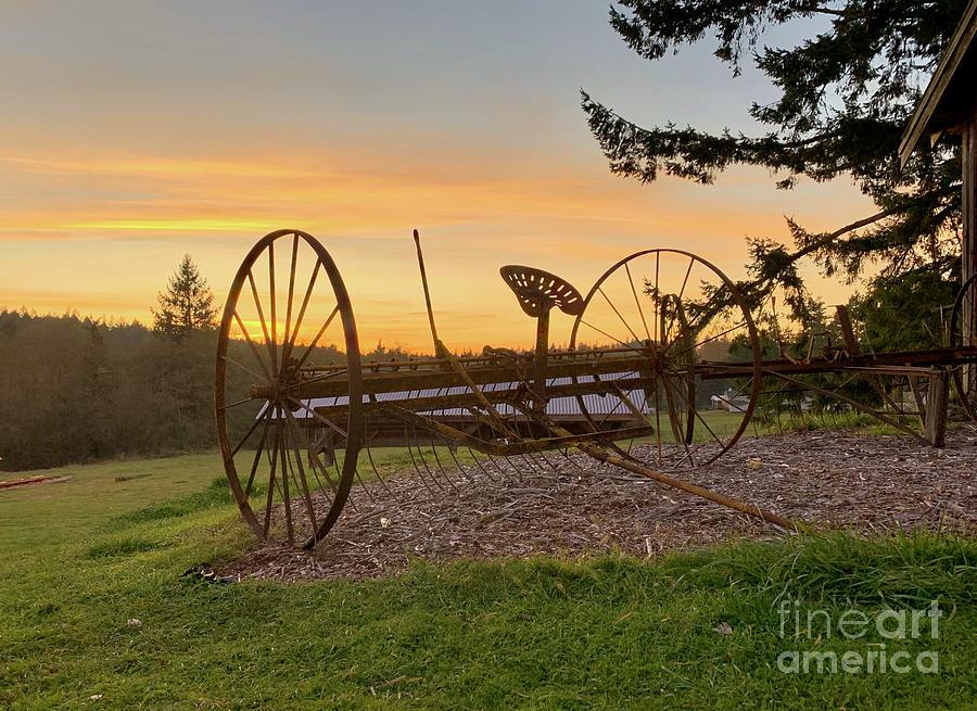 Farm Memories by Sean Griffin