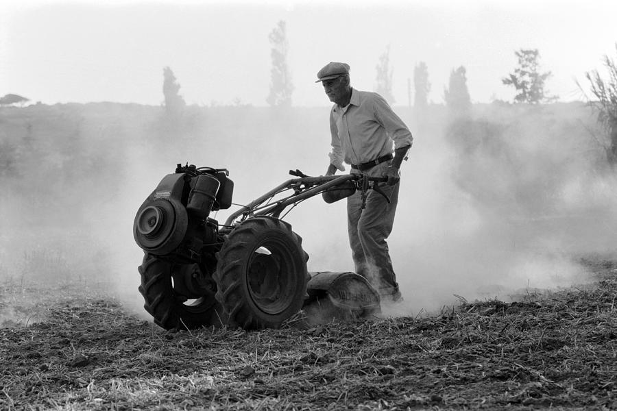 Farmer Plows The Land Photograph
