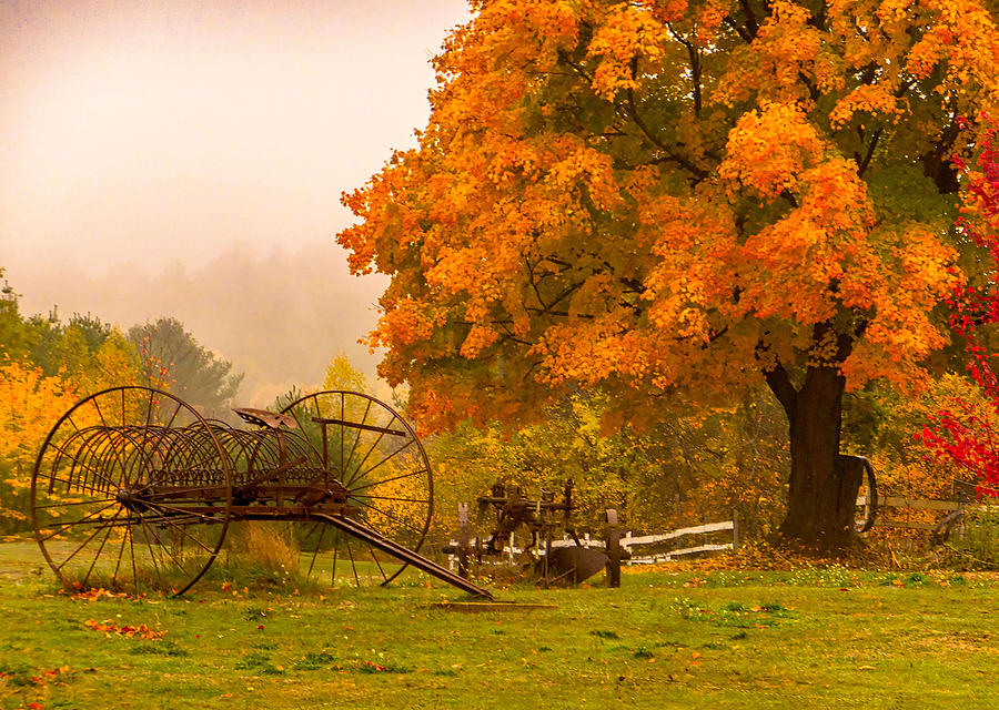Farmland Fall  Photograph by Ali Bailey