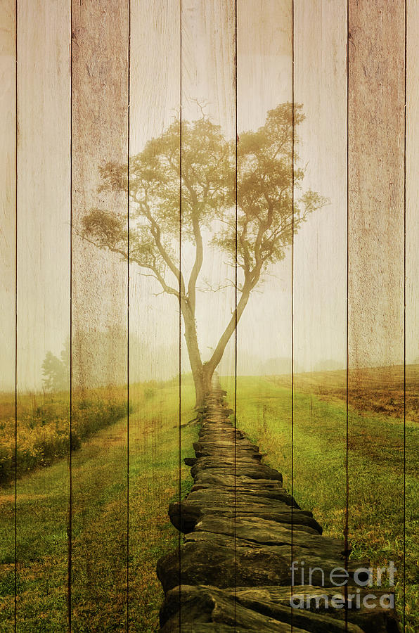 Faux Wood Photograph - Faux Barn Board Wood Texture Calming Morning Rural Landscape Photograph by Melissa Fague