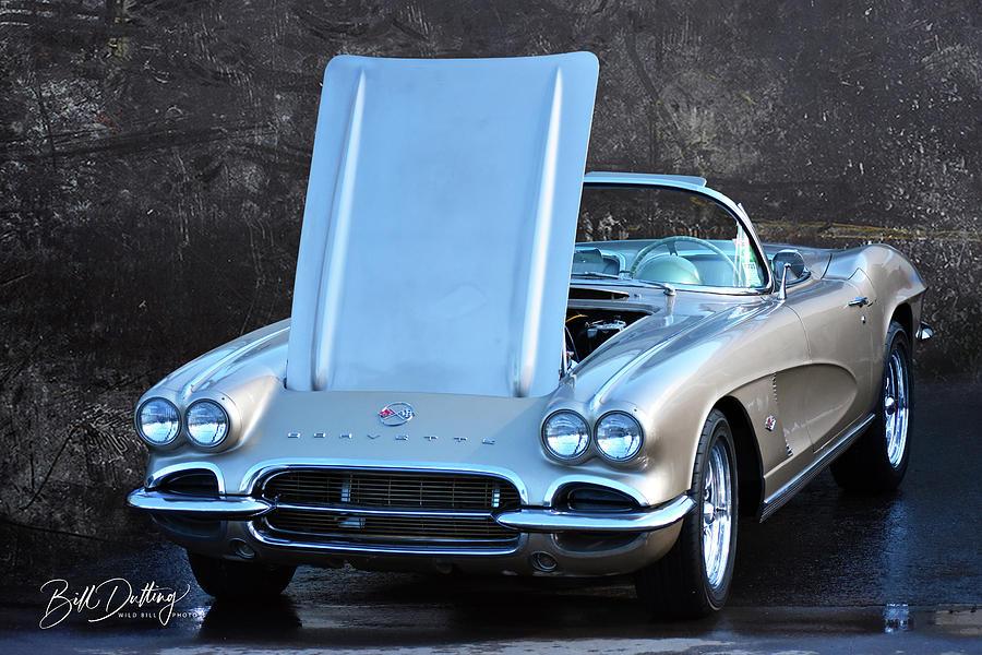 Fawn 62 Corvette by Bill Dutting