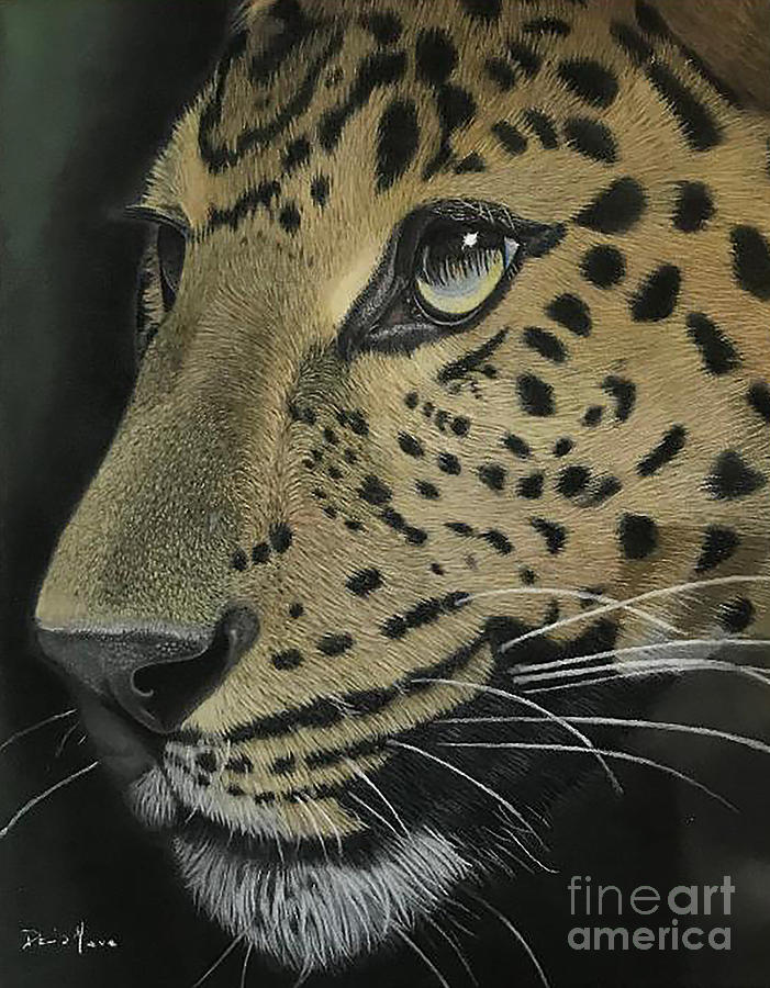 Fearless Photograph - Fearless Leopard Pastel Painting by Dave Nevue