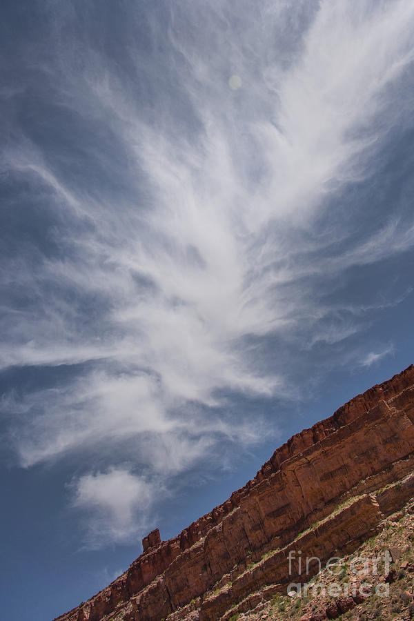 Feathered Clouds by Mae Wertz