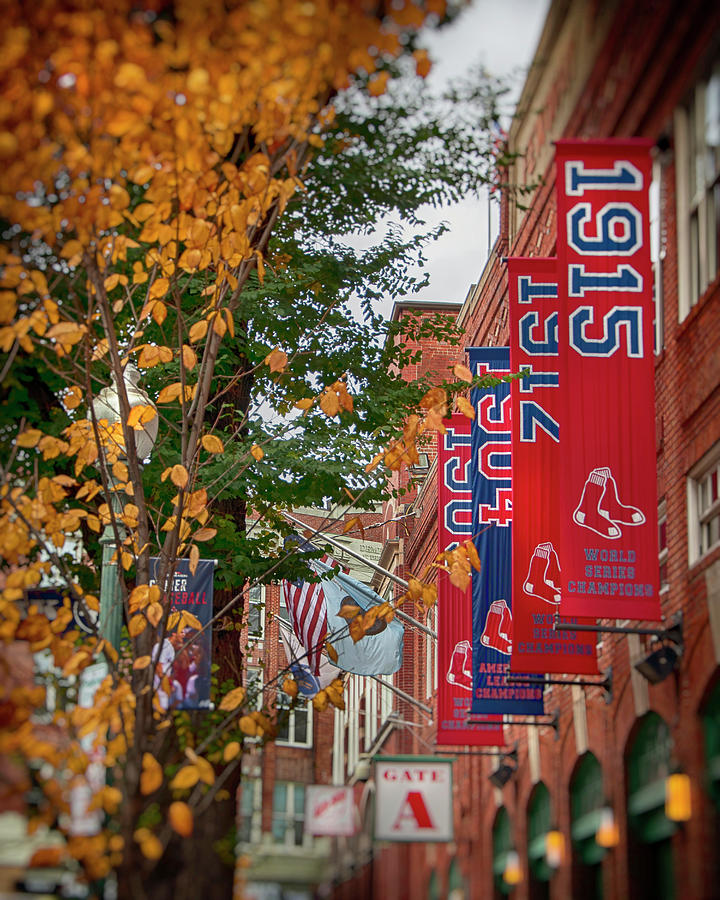 Fenway Park in Fall by Joann Vitali