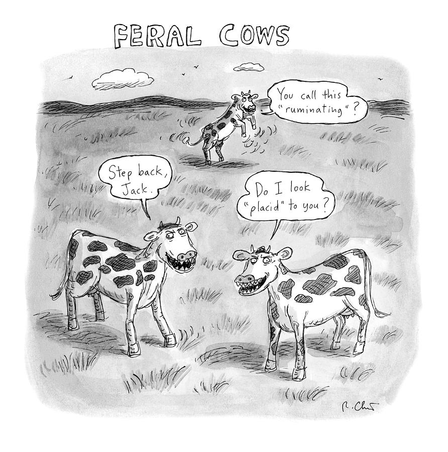 Feral Cows Drawing by Roz Chast
