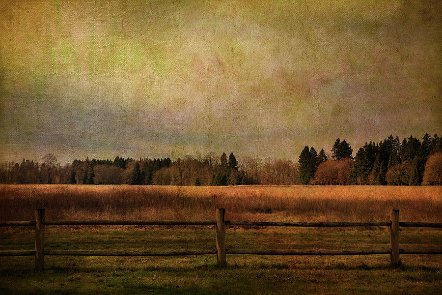 Field And Fence Photograph