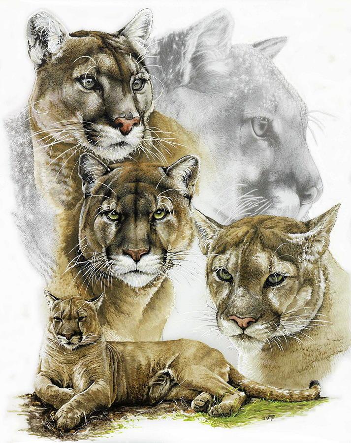 Cougar Mixed Media - Fierce by Barbara Keith