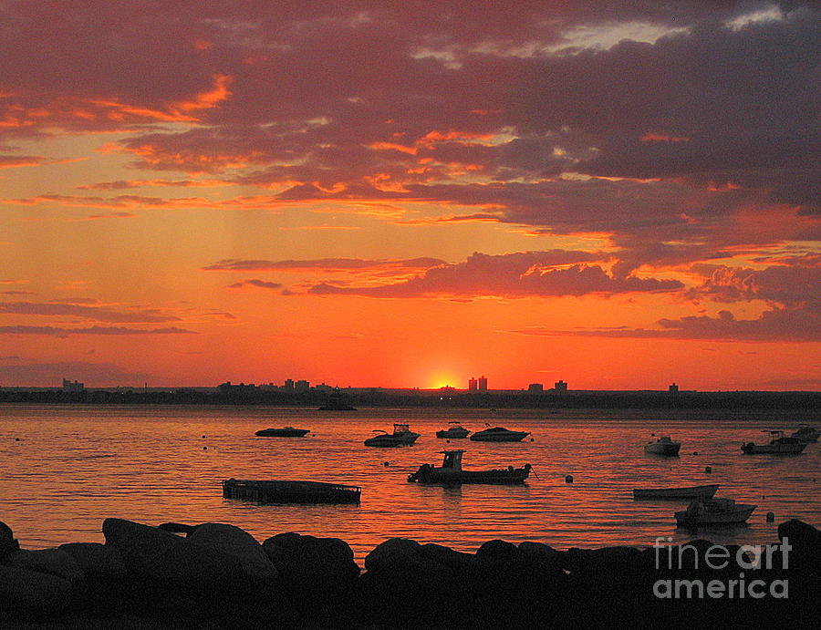 Sunset Photograph - Fiery Sunset Over The Bay by Dora Sofia Caputo Photographic Design and Fine Art
