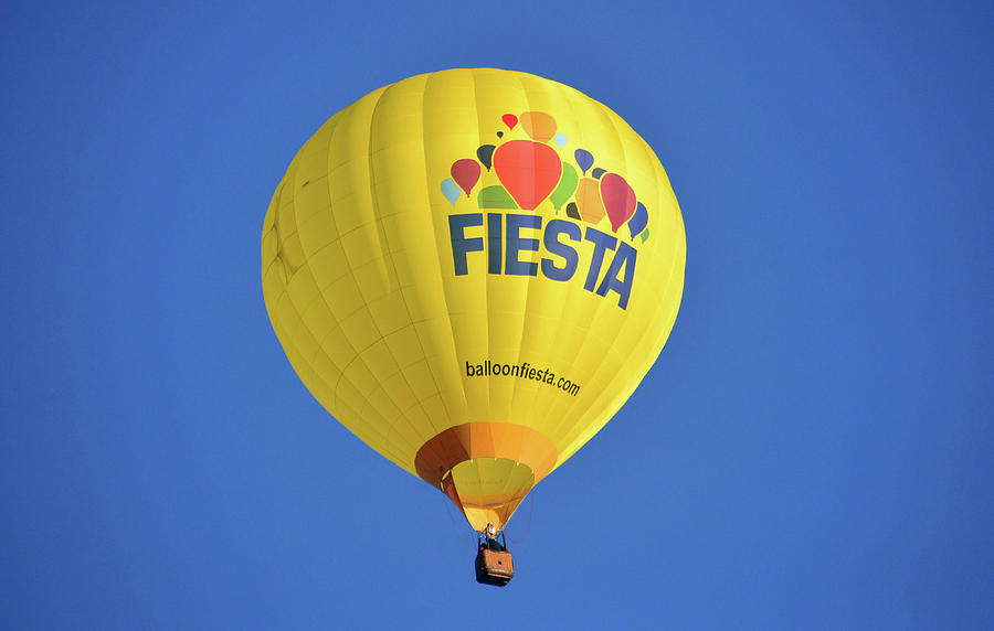 Fiesta Balloon by David Lee Thompson