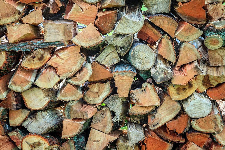 Firewood Photograph