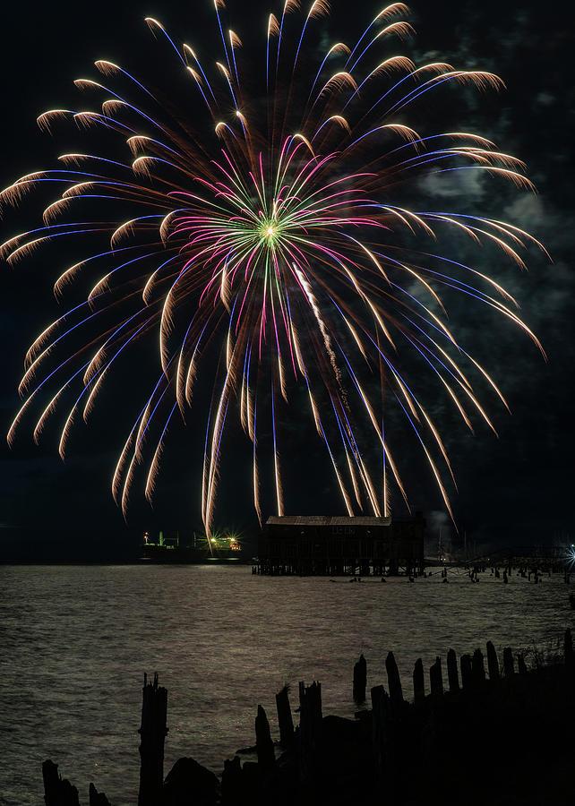 Fireworks Blues by Robert Potts