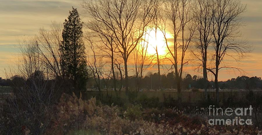 Charlotte Nc Photograph - Golden First Day of Winter  by J Hale Turner