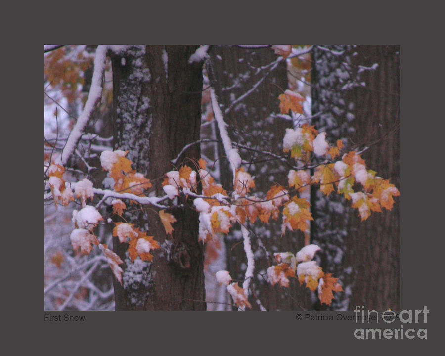 First Snow by Patricia Overmoyer