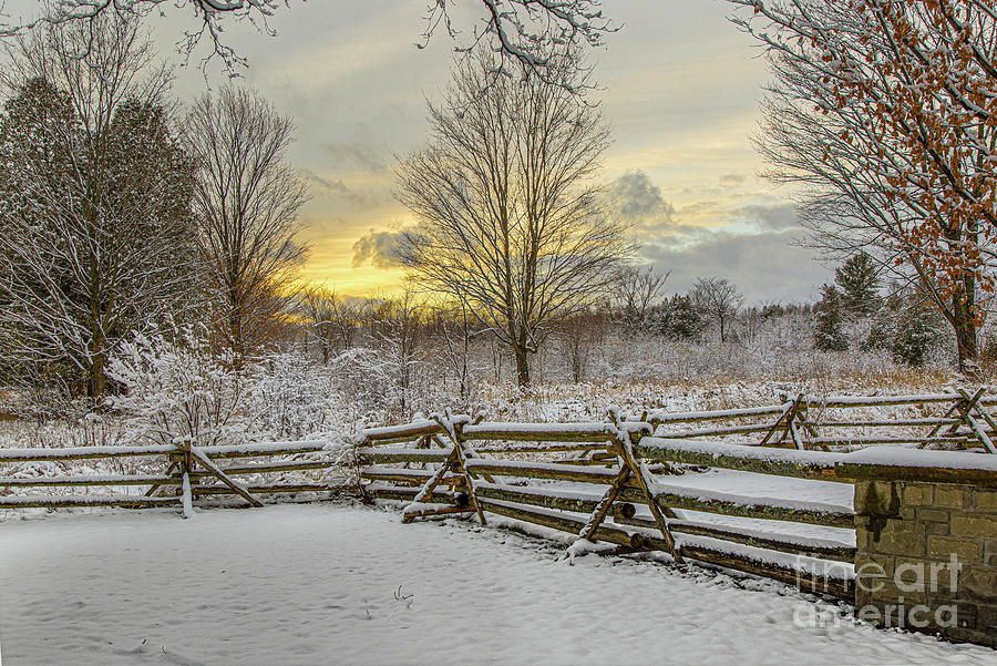 First Snow by Roger Monahan