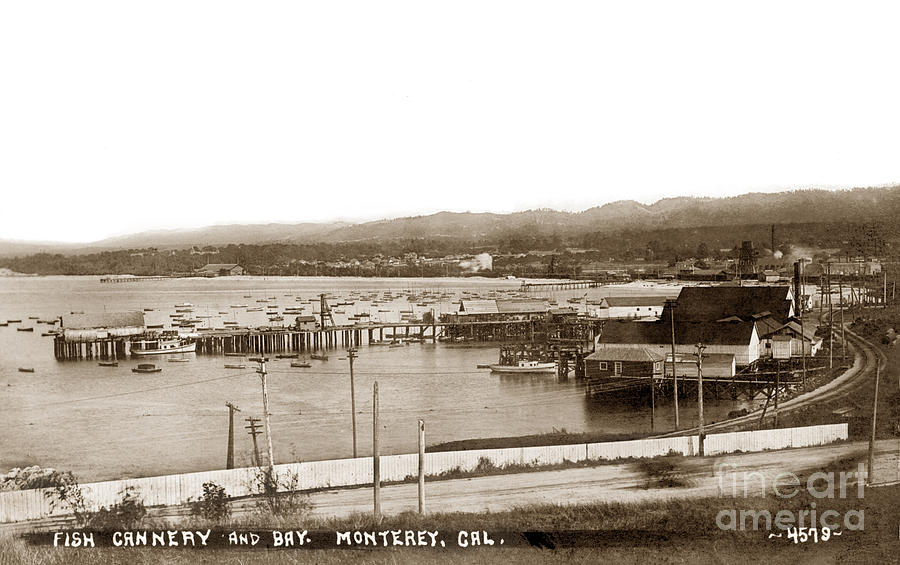 Fish Cannery And Bay, Monterey, Cal.  1910 Photograph