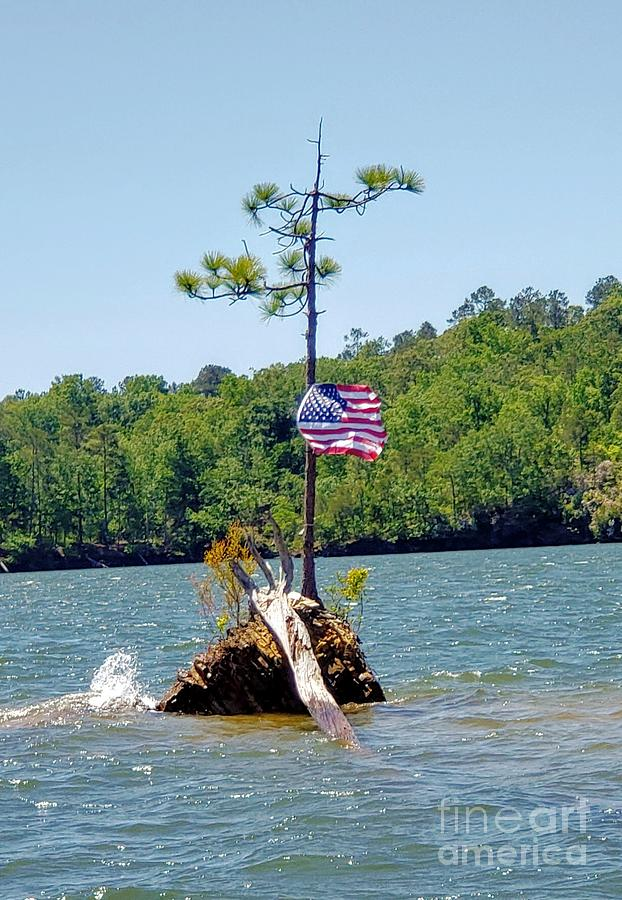 Flag Upon A Tiny Island Photograph