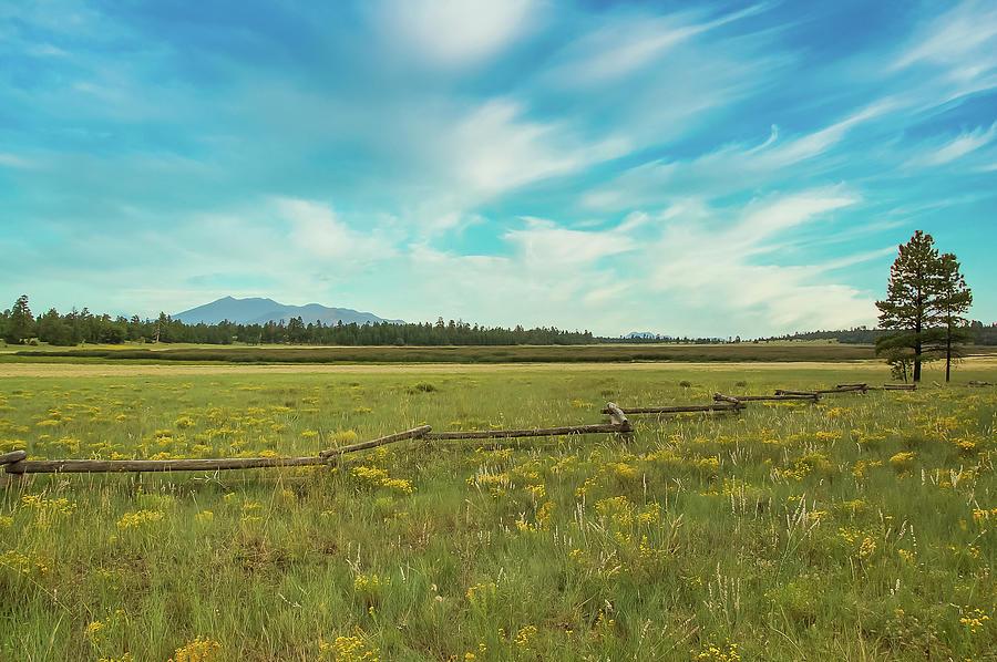 Flagstaff Mountain View Photograph